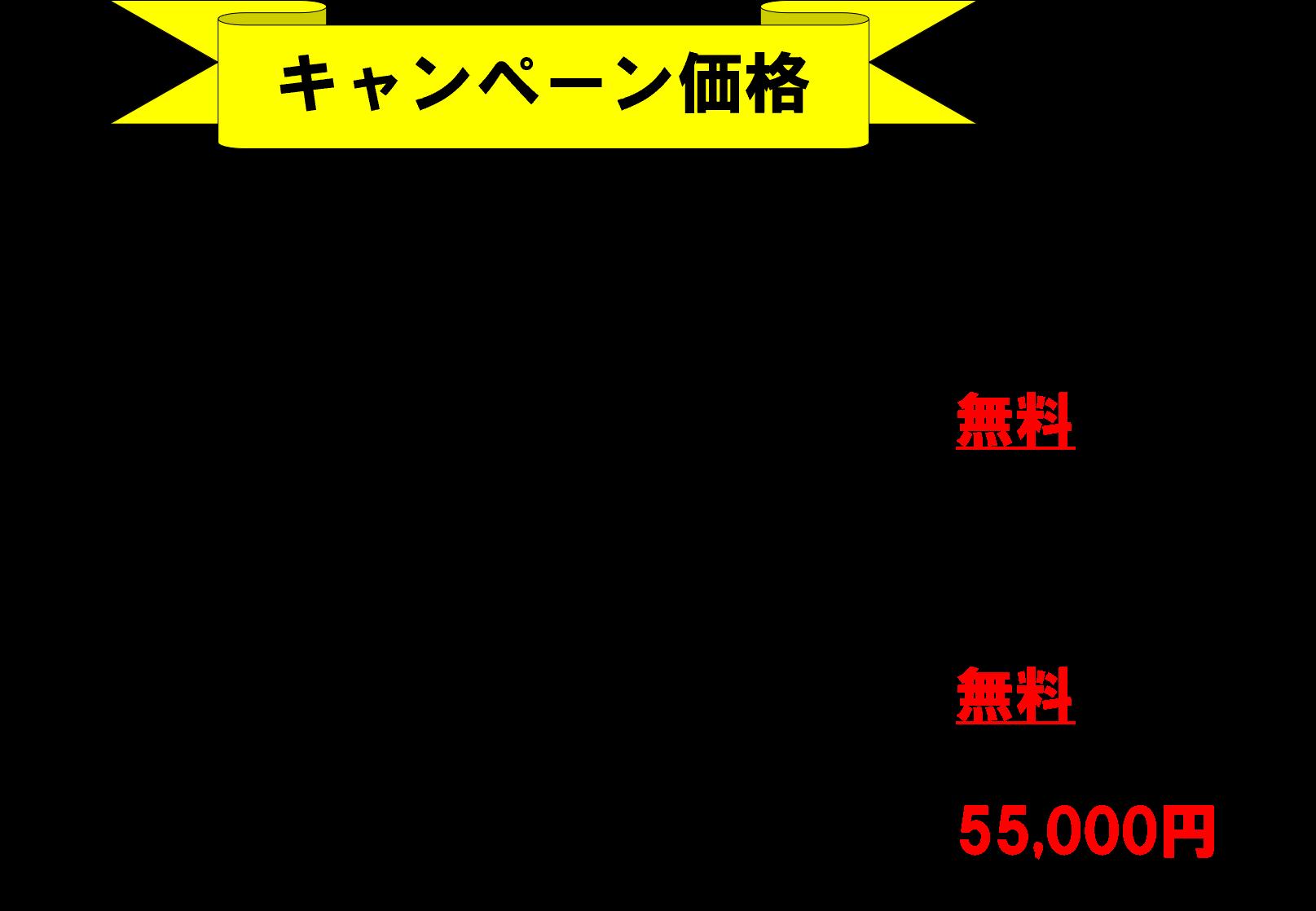 料金表(ベーシックキャンペーン)