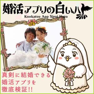 婚活アプリの白いハト