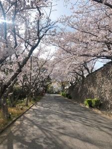 東郷公園(福岡県福津市渡)